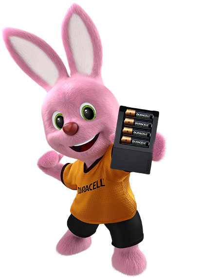 Bunny holding battery charger with 4 batteries inside